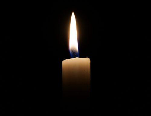 Wir trauern um Holle Scholemann