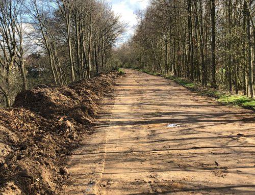 Mutwillige Zerstörung des idyllischen Freiraums des strategischen Bahndamms bei Neukirchen-Hülchrath-Münchrath?